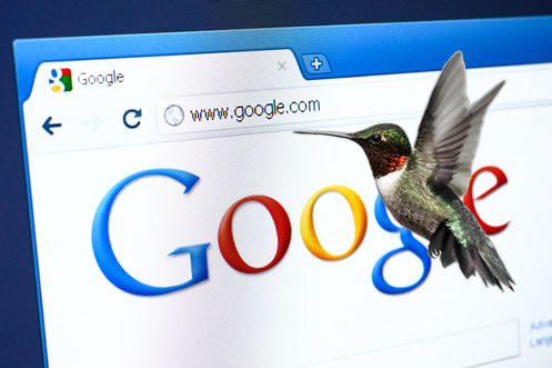 que es google hummingbird